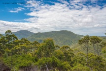 Views during the hike to the summit of Mt. Oberon